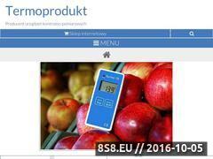 Miniaturka domeny www.termoprodukt.com.pl