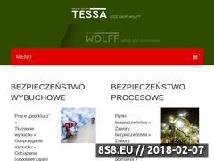 Miniaturka www.tessa.eu (Bezpieczeństwo procesowe)