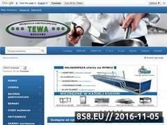 Miniaturka domeny www.tewa.pl