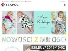 Miniaturka domeny texpol.net.pl