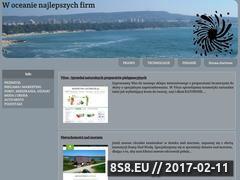 Miniaturka domeny www.tions.pl