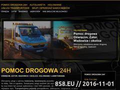 Miniaturka domeny www.tolkastrans.pl