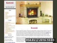 Miniaturka domeny www.top-kominki.pl