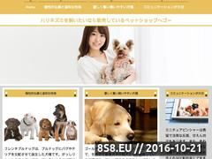 Miniaturka domeny www.torby-reklamowe.info