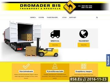 Zrzut strony P.H.U. Dromader -transport międzynarodowy i przewozy w Szczecinie
