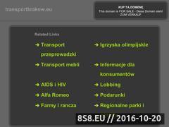 Miniaturka domeny www.transportkrakow.eu