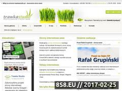 Miniaturka domeny trawkastudio.pl