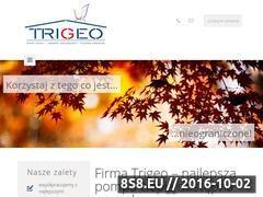 Miniaturka domeny trigeo.pl
