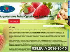 Miniaturka domeny www.truskawki.eu