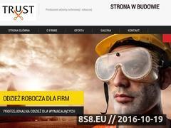 Miniaturka domeny trust-bhp.pl