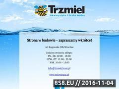 Miniaturka domeny trzmiel.com.pl