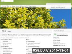 Miniaturka domeny trzmielina.com.pl