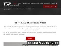 Miniaturka domeny www.tsw.biz.pl