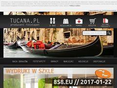 Miniaturka domeny www.tucana.pl