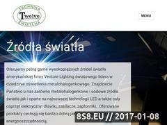 Miniaturka domeny www.twelvets.com.pl