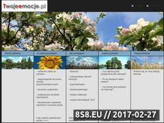 Miniaturka domeny www.twojeemocje.pl