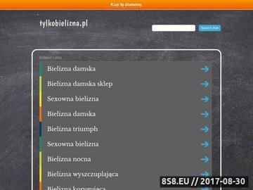 Zrzut strony Tylkobielizna.pl