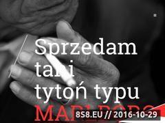 Miniaturka domeny www.tytonlodz.pl