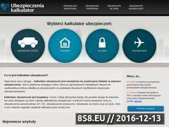 Miniaturka domeny ubezpieczenia-kalkulator.pl