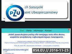 Miniaturka domeny ubezpieczenia-pzu.bydgoszcz.pl