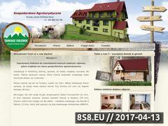 Miniaturka domeny www.uchlebkow.ochotnica.net