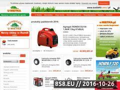 Miniaturka domeny www.umietka.pl