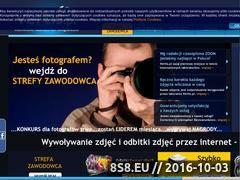 Miniaturka domeny vertis.pl