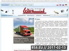 Miniaturka domeny www.wachowiak.pl
