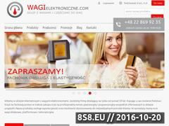 Miniaturka domeny www.wagielektroniczne.com