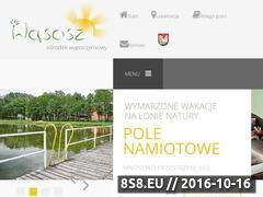 Miniaturka domeny www.wasoszwita.pl