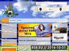 Miniaturka waszaliga.pl (Typowanie spotkań piłkarskich)
