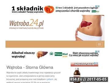 Zrzut strony Informacje na temat wątroby: budowa, choroby, profilaktyka