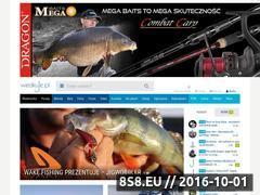 Miniaturka domeny www.wedkuje.pl