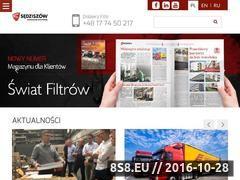 Miniaturka domeny www.wf-filter.pl