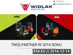 Miniaturka domeny widlak-serwis.pl