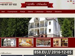 Miniaturka domeny www.willa-amalia.pl