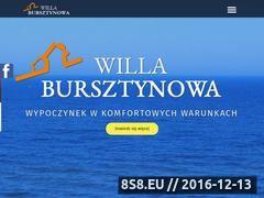 Miniaturka domeny willabursztynowa.com