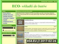 Miniaturka domeny wkladki-eco.pl