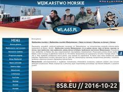 Miniaturka domeny www.wla65.pl