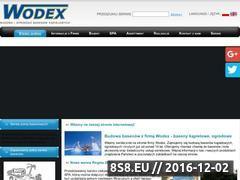 Miniaturka domeny www.wodex.pl
