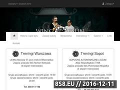 Miniaturka domeny www.wtkungfu.pl