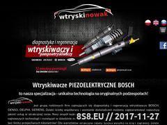 Miniaturka wtryskinowak.pl (Usługi związane serwisem silników diesla)