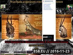 Miniaturka domeny www.zagorski007.republika.pl