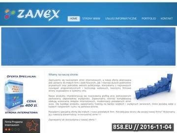 Zrzut strony Tworzenie i projektowanie stron internetowych Toruń, Zanex Usługi informatyczne