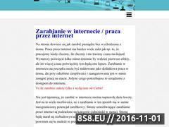 Miniaturka domeny zarabiajprzez24.pl