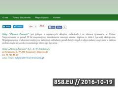 Miniaturka domeny zdrowazywnosc.biz.pl