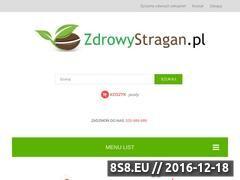 Miniaturka domeny zdrowystragan.pl