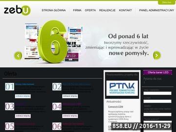 Zrzut strony Profesjonalne projektowanie stron internetowych