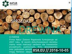 Miniaturka domeny www.zielonepogotowie.pl