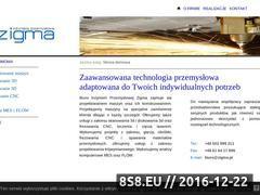 Miniaturka domeny www.zigma.pl